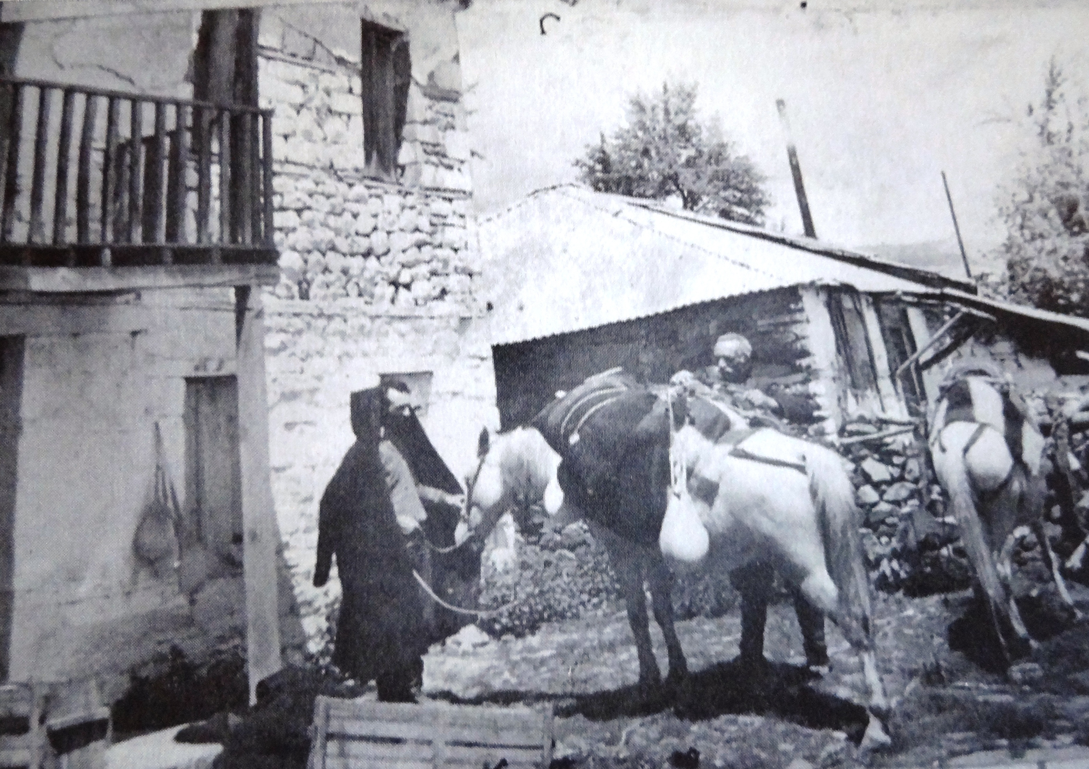 Samarina return from the sheepfold